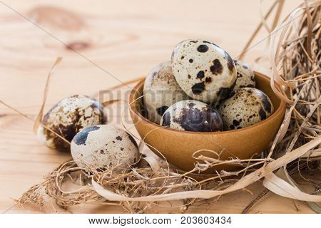 quail eggs in a bowl and laid out around it border. on wooden background.