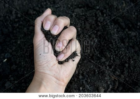 Female Hand Holding A Handful Of Rich Fertile Soil That Has Been Newly Dug Over Or Tilled In A Conce