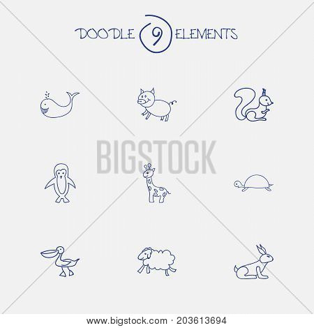 Set Of 9 Editable Zoology Doodles. Includes Symbols Such As Chipmunk, Pelican, Rabbit And More