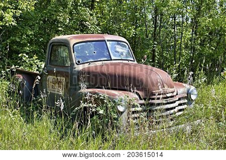 SEPTEMBER 2017 -  MINNESOTA, USA :Old abandoned Chevy pickup truck sitting in a field in rural Minnesota, USA in September 2017