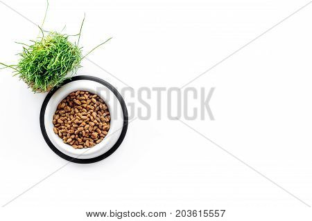 pet care with dry food for pet - cat in plastic bowl on white desk background top view space for text