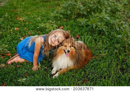 Cute little girl with a dog Sheltie breed. Best friends forever. Dog devotion. A girl and a pet in the park. Portrait
