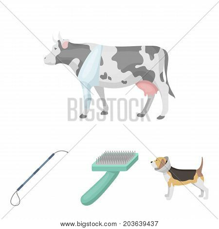 Dog, cow, cattle, pet .Vet Clinic set collection icons in cartoon style vector symbol stock illustration .