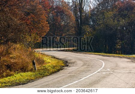 Winding Road Through The Forest With Red Foliage