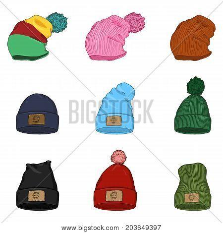 Vector Set of Cartoon Winter Caps and Hats. Seasonal Headwear.