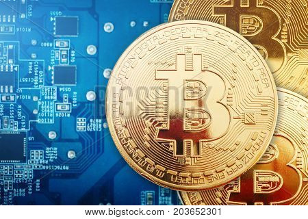 Three gold coins of bitcoin lie on the video card. Business background.