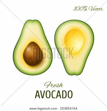 Vector realistic two slices of ripe avocado. One slice with core. Design element isolated on white background