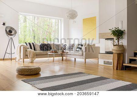 Striped Grey Carpet