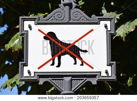 No dog allowed sign on the city street