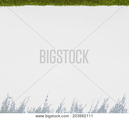 white blur background with flower silhouette above