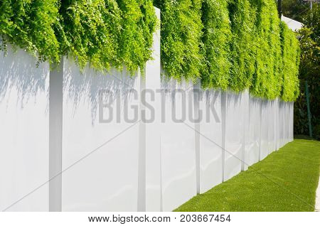 white fence with a green grass above