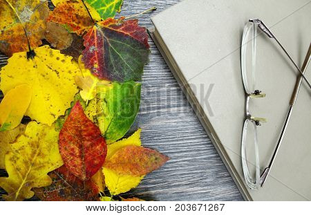 Closed book, glasses in the background with fallen leaves.