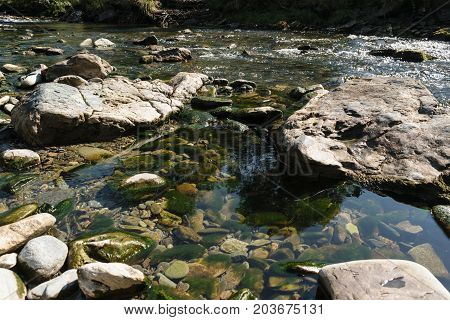 water creek flowing through rocks and puddle showing rocks covered in green algae