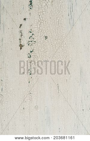 A white rustic wooden background with patina