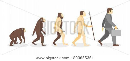 Cartoon Stage of Human Evolution from Monkey to Businessman Development Concept Flat Design Style. Vector illustration of Process Evolve Man