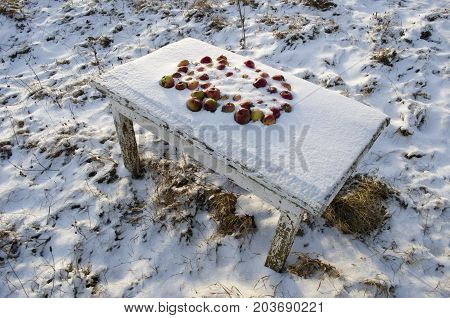 Frozen apples outdoor on old wooden garden table in winter snow