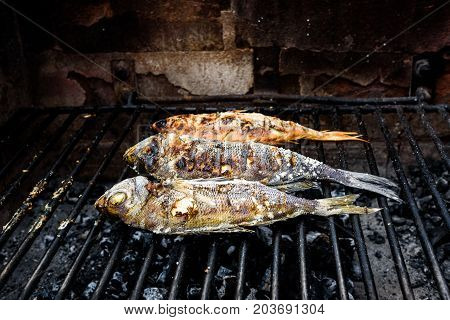 Making Fish On A Bbq Barbecue Grill Over Hot Coal.