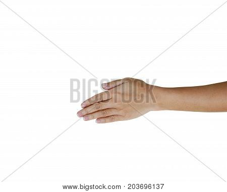 A Back Hand And Fingers Of Healthy Woman Isolate