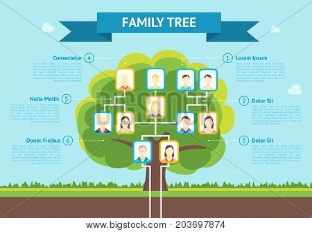 Cartoon Green Family Tree with Photo Concept of Genealogical History Infographic Card Poster Flat Design Style. Vector illustration