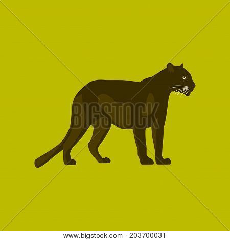 Vector illustration in flat style panther wildlife