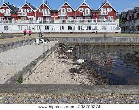 Sandy Beach In Residential Area