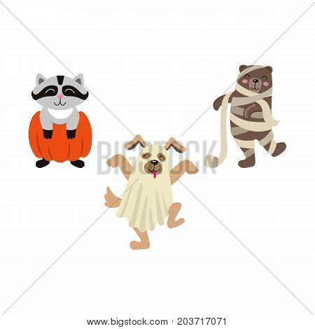 vector flat cartoon funny halloween animals - bear mummy, wrapped in toilet paper, owl in witch hat , caroon in pumpkin and dog ghost in bedsheet set. Isolated illustration on a white background
