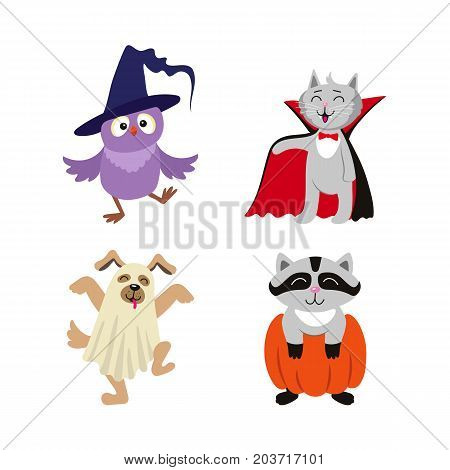 vector flat cartoon funny halloween animals - cat dressed up like vampire count Dracula, owl in witch hat , caroon in pumpkin and dog ghost in bedsheet set. Isolated illustration on a white background