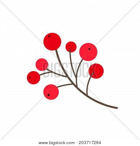 vector flat cartoon style holly tree, mistletoe or ilex berries on branch . Isolated illustration on a white background. Christmas cards, banners of presentation decoration design symbol