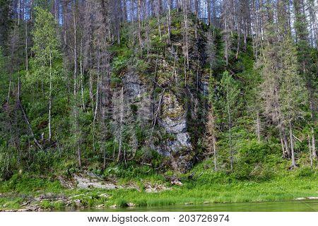 Landscape. Taiga. The rivers of the north of Siberia. Russia