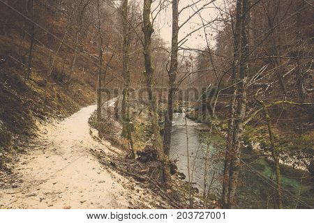 Curve right pathway and clear stream flow in forest, Small river through sidewalk with tree line around mountain in autumn jungle