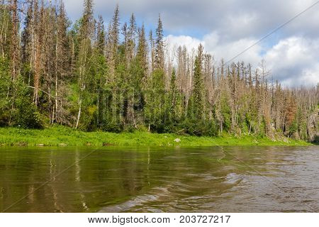 Landscape with water. The rivers of the north of Siberia. Russia