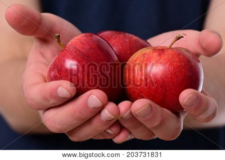 Apples Trio On Tshirt Background. Apples In Bright Juicy Color
