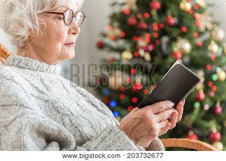 Prayer. Profile of religious senior woman is reading scripture with concentration. She is expressing calm and confidence. Decorated Christmas tree is on background