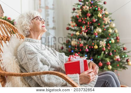 Gift for Christmas. Thoughtful senior woman in glasses is resting in big chair and holding Christmas gift. Decorated spruce is on background. Copy space in the right side