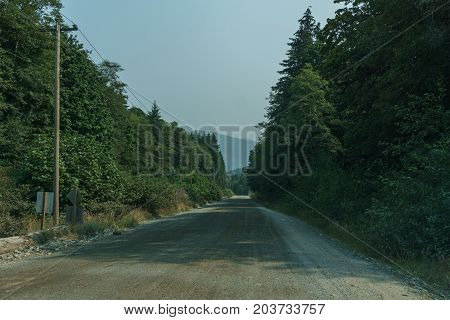 Gravel Road at north in Vancouver island at foggy day