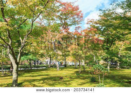 Beautiful autumn garden in Kiyomizu-dera temple at Kyoto Japan