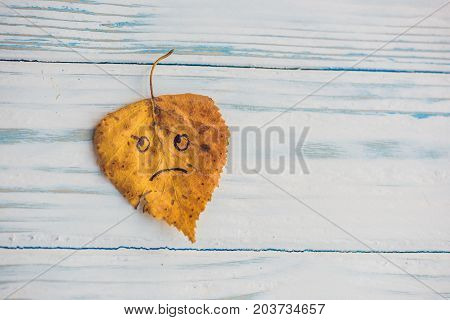 Yellow And Green Leaf With Sad Face On The Old Wooden Background