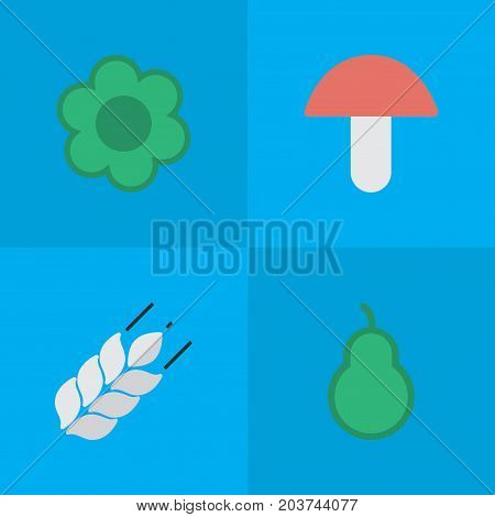 Elements Corn, Punching Bag, Fungus And Other Synonyms Fungus, Wheat And Punching.  Vector Illustration Set Of Simple Horticulture Icons.