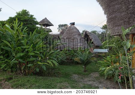 June 6 2017 Misahualli Ecuador: eco buildings made of bamboo in the Amazon area