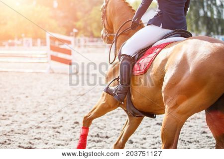 Young girl on sorrel horse galloping on her course on show jumping competition. Image with copy space