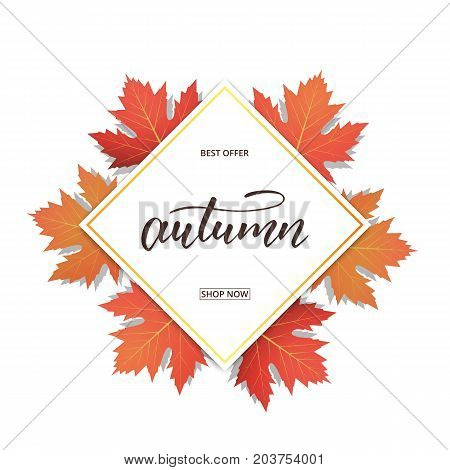 Autumn. Banner with maple leaves frame and trendy Autumn brush lettering. Seasonal Fall sale card.