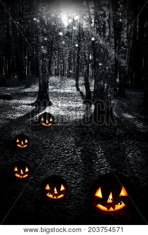 Night dark forest and pumpkins in fall season on a holiday halloween