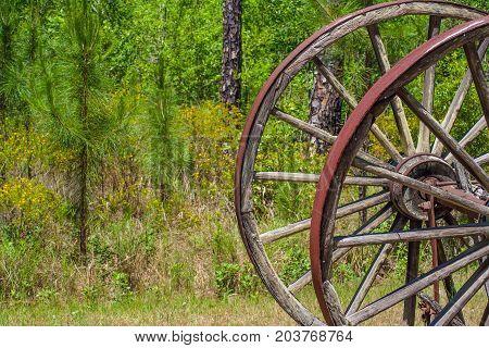 Detail of a big log cart wooden wheel in the Okefenokee park Waycross Georgia. U.S.A.