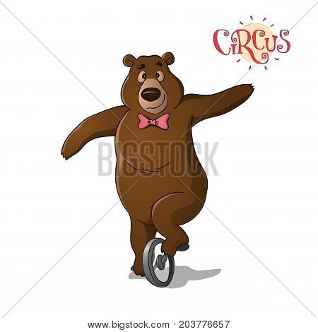 A Circus Brown Bear Riding A Unicycle.