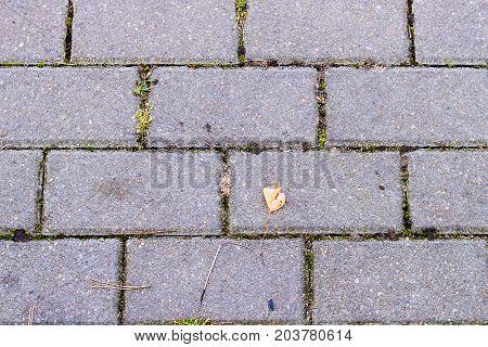 Pattern of brick block on walkway, triangle block is difference, zigzag blocks texture