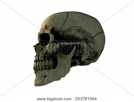 Human skull on Rich Colors on a White Isolated Background. The concept of death, horror. A symbol of spooky Halloween. 3d rendering illustration.