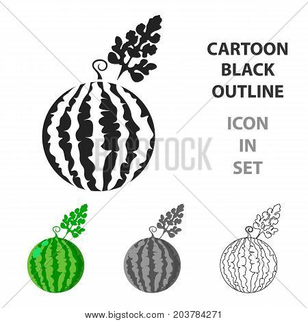 Watermelon icon cartoon. Single plant icon from the big farm, garden, agriculture cartoon stock vector