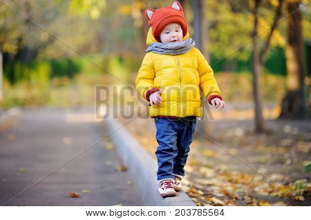 Cute Toddler Boy Wearing Hat With Ears Playing Outdoors At Autumn Day