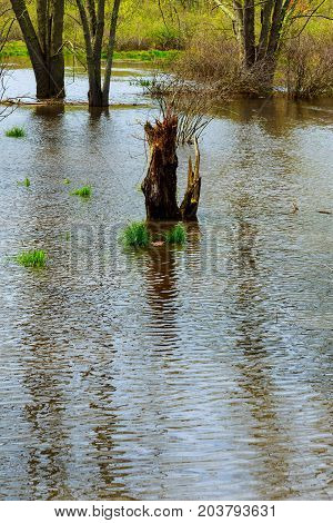 Flooded after heavy rain flood flooded park