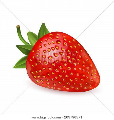 Strawberry. Sweet fruit. 3d vector icons set. Realistic illustration. Strawberry Realistic icon vector isolated on white background. beautiful strawberries. vector illustration of a realistic